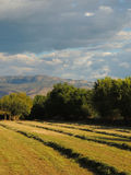 Freshly cut hay harvested in fall, mountains, sky Stock Images