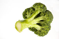 Freshly cut head of broccoli Stock Photography
