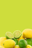 Freshly cut lime fruit and some lemons Stock Photos