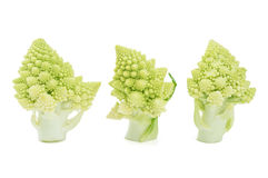 Freshly cut romanesco broccoli pieces Stock Photography