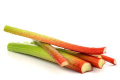 Freshly  cut stems of rhubarb. On a white background Stock Photography