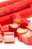Freshly cut stems of rhubarb on a white background Stock Images