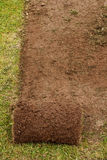 Freshly Cut Turf. A roll of turf used to make the perfect lawn Royalty Free Stock Photos