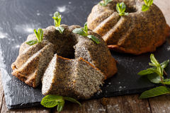 Freshly delicious Pound poppy cakes with mint close up. horizont Stock Images