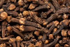 Freshly dryed clove spice texture close up Royalty Free Stock Photos