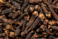 Freshly dryed clove spice texture close up Royalty Free Stock Photography