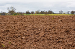Freshly dug agricultural field. A freshly dug and recently seeded agricultural field, good background for farming stock photo