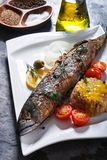 Freshly fried fish with vegetables and rice Stock Image
