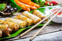 Freshly fried spring rolls Stock Photography