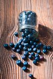 Freshly gathered blueberries put into jar. Some fruits freely scattered on old wooden table. Shot from above stock photography