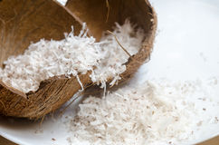 Freshly grated coconut Royalty Free Stock Photos
