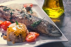 Freshly grilled fish with vegetables and rice Royalty Free Stock Photo