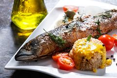 Freshly grilled fish with vegetables and rice Royalty Free Stock Image