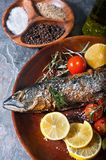 Freshly grilled fish with vegetables and spices Royalty Free Stock Photos