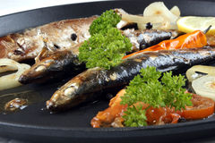 freshly grilled sardines prepared as food Royalty Free Stock Photos