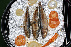 freshly grilled sardines prepared as food Royalty Free Stock Image