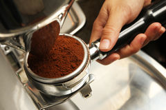 Freshly grinded coffee being emptied onto coffee holder - Series 3. Barista obtaining freshly grinded coffee powder Stock Photography