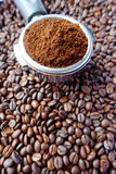 Freshly ground coffee beans in a metal filter Stock Image