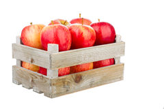 Freshly harvested apples in a wooden crate. Isolated on a white background Royalty Free Stock Photos