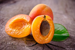 Freshly harvested apricots Stock Photos
