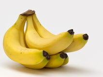 Freshly harvested banana bunch Royalty Free Stock Photography