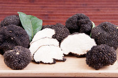 Freshly harvested black truffle Royalty Free Stock Photos