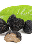 Freshly harvested black truffle Stock Photo