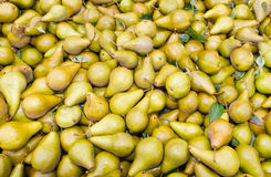 Freshly harvested bosc pears on display Royalty Free Stock Photos