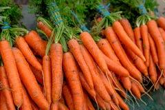 Fresh carrots. Freshly harvested carrots at farmer`s market Stock Images