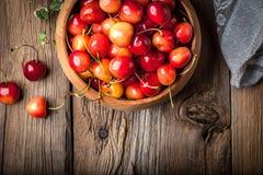 Freshly harvested cherrie. Stock Image