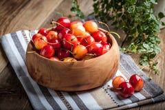 Freshly harvested cherrie. Royalty Free Stock Image