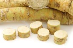Freshly harvested cut horseradish pieces Stock Photos
