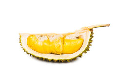 Freshly harvested durian fruit with aromatic and delicious golden yellow soft flesh Stock Photos