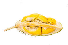 Freshly harvested durian fruit with aromatic and delicious golden yellow soft flesh Royalty Free Stock Photos