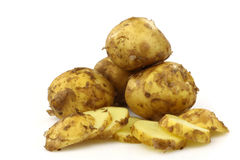 Freshly harvested Dutch new potatoes Royalty Free Stock Photos