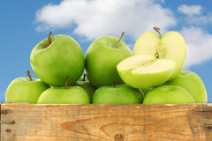 Freshly harvested Granny Smith apples Stock Photography
