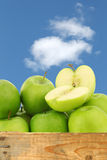 Freshly harvested Granny Smith apples Royalty Free Stock Image