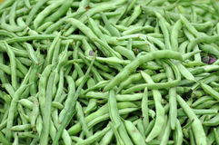 Freshly harvested green peas Stock Image