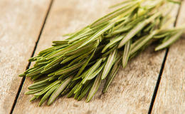 Freshly harvested herbs Royalty Free Stock Image