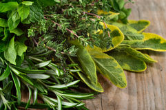 Freshly harvested herbs over wooden background. Stock Photo