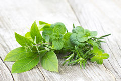 Freshly harvested herbs Stock Photography