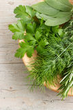 Freshly harvested herbs Royalty Free Stock Photos