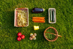 Freshly harvested home grown vegetables lying on grass - top vie Royalty Free Stock Images