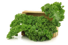 Freshly harvested  kale cabbage in a wooden crate Stock Photography