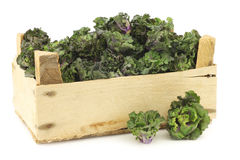 Freshly harvested kale sprouts in a wooden crate Stock Images