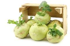 Freshly harvested kohlrabi with some foliage Royalty Free Stock Photo