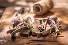 Freshly harvested lavender ready to dry in summer garden. On wooden table stock images