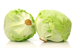 Freshly harvested lettuce Royalty Free Stock Photo
