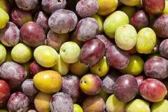 Freshly Harvested Olives Background Royalty Free Stock Image