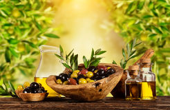 Freshly harvested olives berries in wood bowls and pressed oil stock images